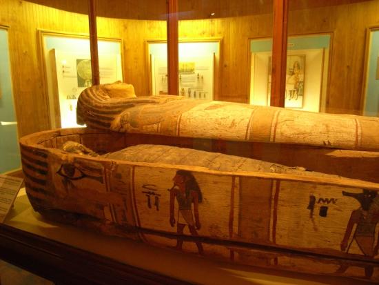 Мумия и саркофаг - пример в фотографии.