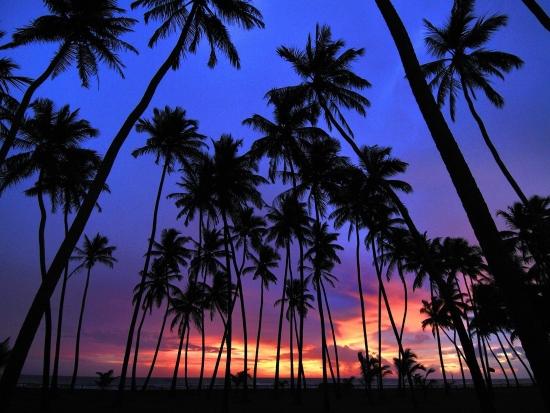 Ваддува ночью - фото пляжа.