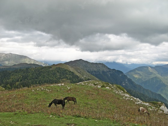 Гора Мамдзышха - с этой горы открываются уникальные пейзажи.