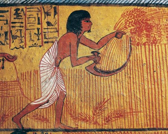 Сельское хозяйство и экономика в Древнем Египте.