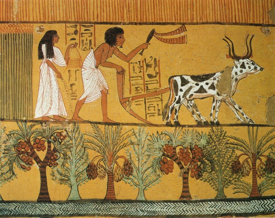 Древнее царство - экономика древнего Египта в этот период.
