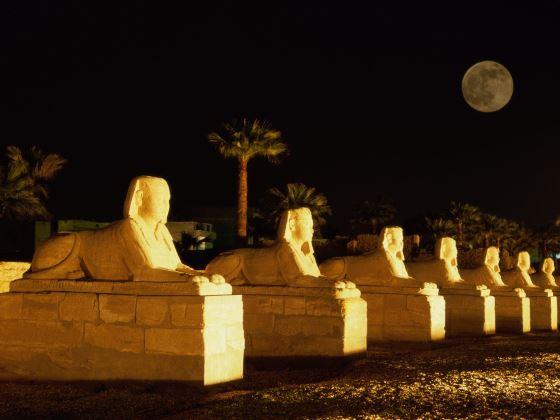 Ночь в Египте незабываемое приключение.