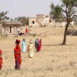 Пустыня Тар на севере Индии: мой друг, журавль