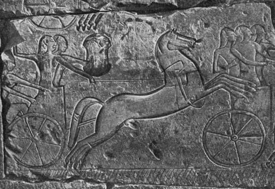 Изображение в камне - Хеттские колесницы.
