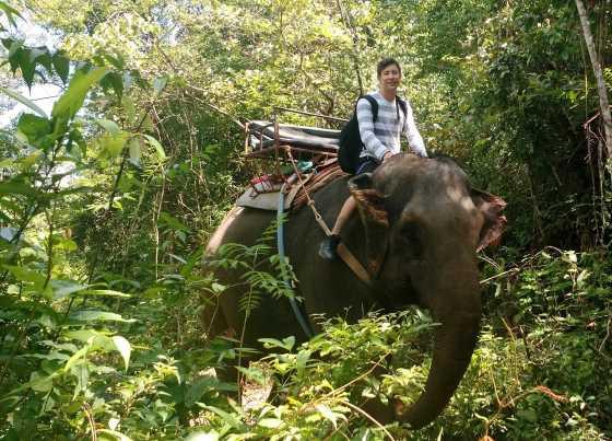Чем себя занять в Таиланде - наш список.