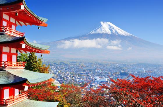 гора Фудзи - символ Токио.