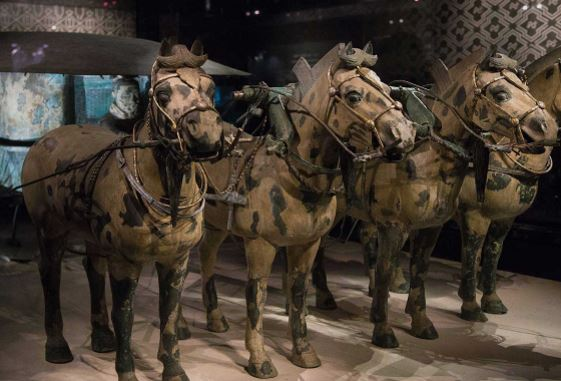 Императорские колесницы фотография.