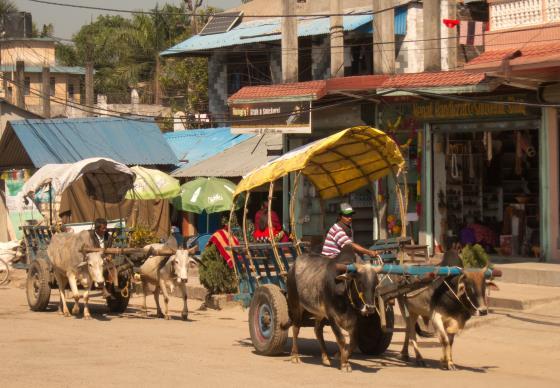 Деревня Саураха и местное население.