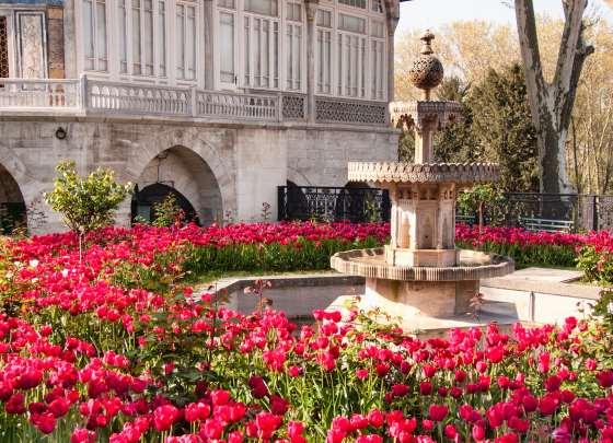 Фонтан в саду и тюльпаны вокруг него.